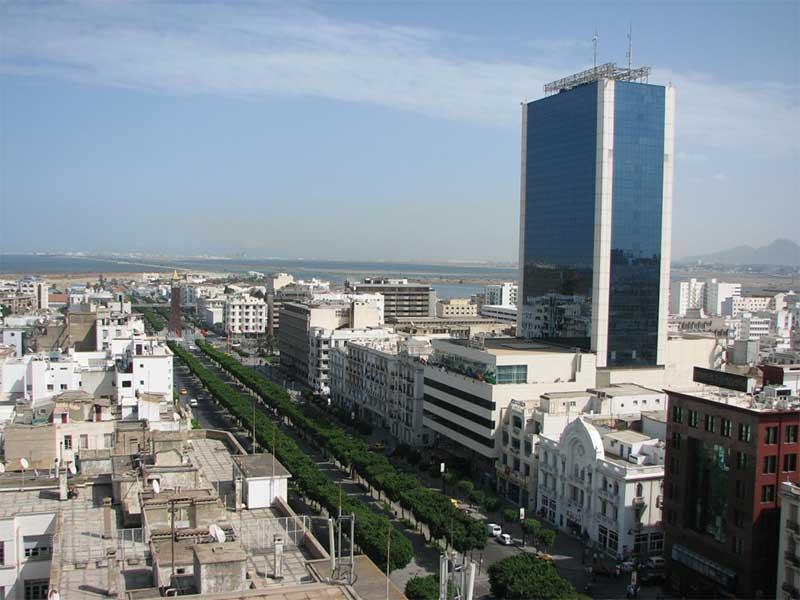 Avec Smart Tunisia et Tunisie Digitale 2020, les développements dans le secteur TIC en Tunisie sont en plein essor. Divers domaines en sont également concernés.